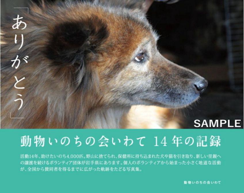 画像1: 動物いのちの会いわて 写真集